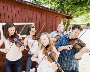 Scandinavian String Alliance @ Indian River Festival